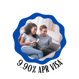 Low Interest Credit Card Image